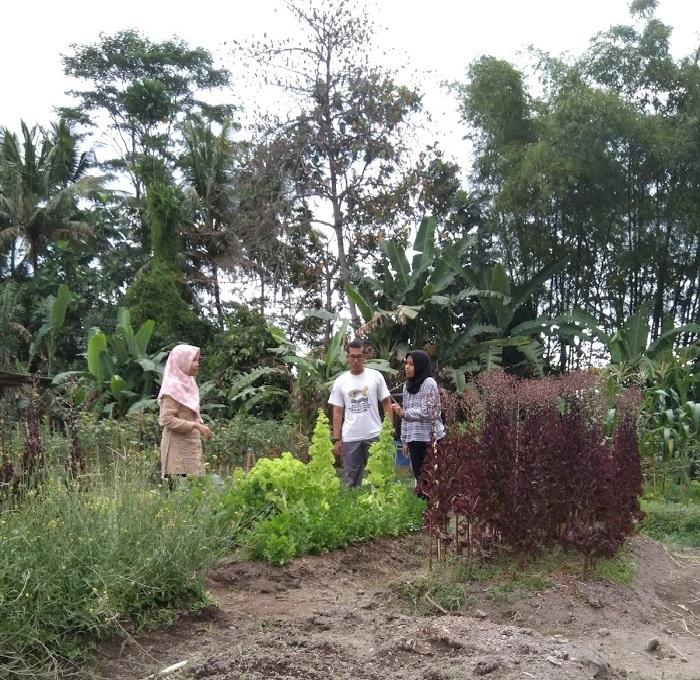 Exploring natural Farmers cooperations 1.jpg